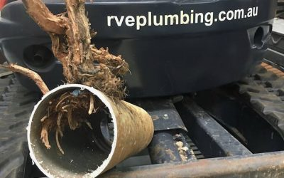 Clearing blocked drains in Sydney